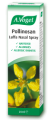 A Vogel Hayfever Nasal Spray 20ml