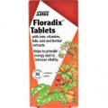 Floradix 84  Iron tablets