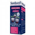 Sambucol Black Elderberry - Kids Formula 120ml