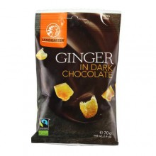 Landgarten Organic Ginger in Dark Chocolate 70g